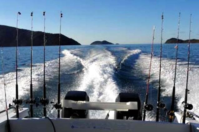 Marlborough Sounds Fishing Holiday 2