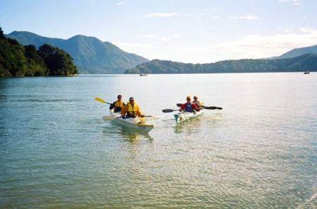 Marlborough Sea Kayak