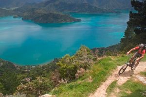 Marlborough Sounds Adventure